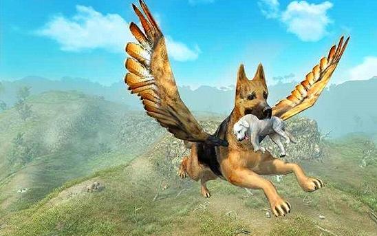 会飞的狗在哪里怎么才能知道